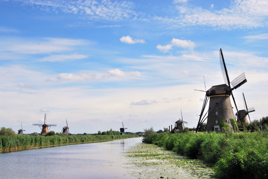 the-windmills-555944_1920
